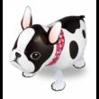 Francia bulldog sétáló lufi