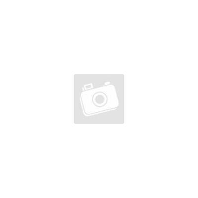Első születésnapi tányér kék lufis